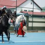 кочевники 2 лошади