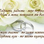 svadebnyj_plakat_5
